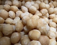 Macadamia - geröstet