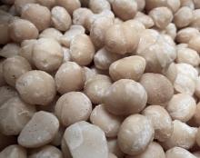 Macadamia - roh